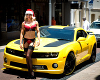 Bumble Bee and Mrs Christmas